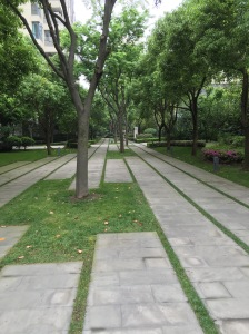 Lots of green spaces and walkways for Kenobi.