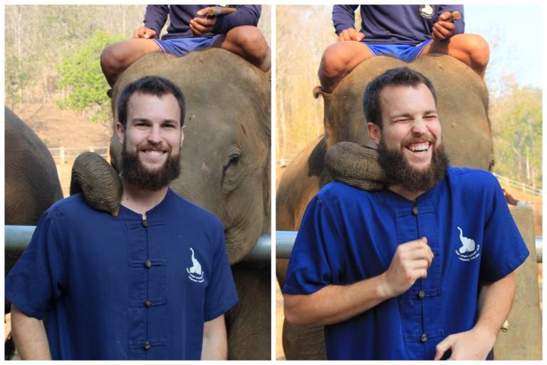 David Elephant